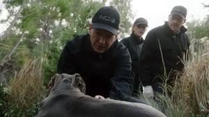 NCIS, Season 18 - Watchdog image