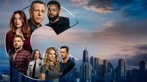 Chicago PD, Season 9 image 2