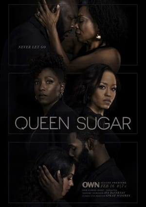 Queen Sugar, Season 4 poster 1