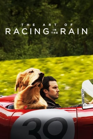 The Art of Racing In the Rain posters