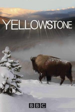 Yellowstone, Season 1 posters