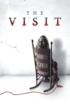 The Visit poster 4