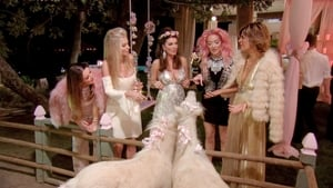 The Real Housewives of Beverly Hills, Season 7 - Diamonds Under Pressure image