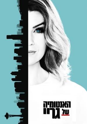 Grey's Anatomy, Season 11 poster 1