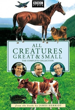 All Creatures Great and Small, Season 1 posters