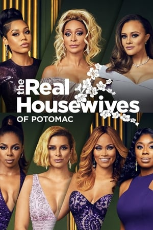 The Real Housewives of Potomac, Season 3 poster 2