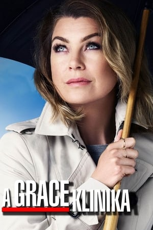 Grey's Anatomy, Season 16 poster 1