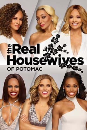 The Real Housewives of Potomac, Season 3 poster 1