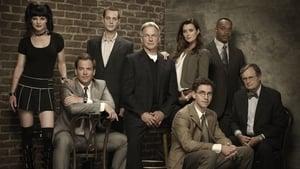 NCIS, Season 17 images