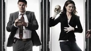 Bones, The Complete Series image 0