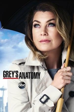 Grey's Anatomy, Season 3 poster 3