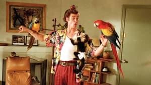 Ace Ventura: Pet Detective image 1