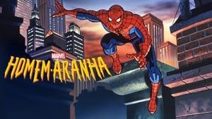 Spider-Man (The New Animated Series), Season 1 image 1