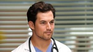 Grey's Anatomy, Season 14 - Go Big or Go Home image