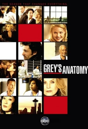 Grey's Anatomy, Season 16 poster 3