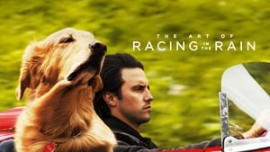 The Art of Racing In the Rain images