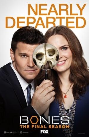 Bones, The Complete Series poster 2