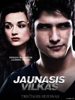 Teen Wolf, Season 1 poster 2