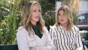 Grey's Anatomy, Season 15 - Everyday Angel image