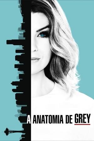 Grey's Anatomy, Season 11 poster 2