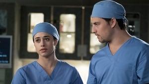 Grey's Anatomy, Season 14 - Beautiful Dreamer image