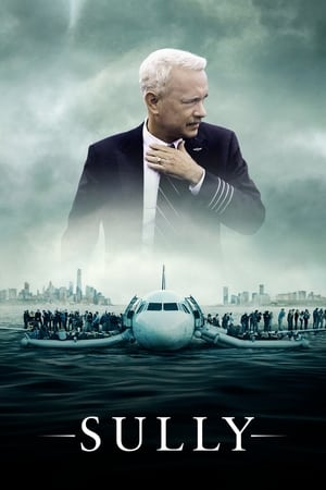 Sully poster 3