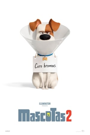 The Secret Life of Pets 2 posters