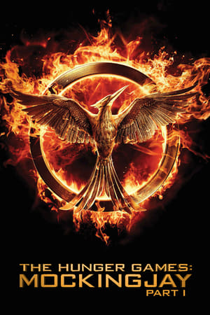 The Hunger Games: Mockingjay - Part 1 poster 3