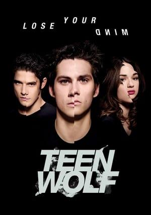Teen Wolf, Season 1 poster 0
