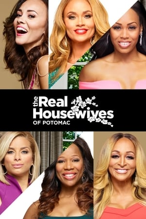 The Real Housewives of Potomac, Season 3 poster 3