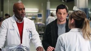 Grey's Anatomy, Season 7 - Golden Hour image