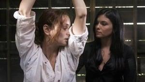 Prison Break, Season 4 - The Price image