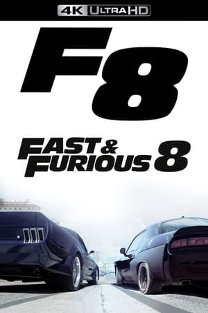 The Fate of the Furious poster 3