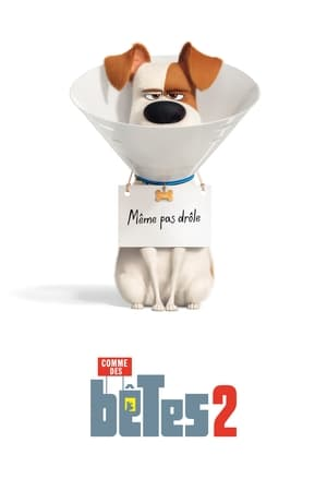 The Secret Life of Pets 2 poster 1