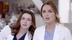 Grey's Anatomy, Season 16 image 1
