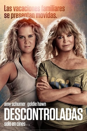 Snatched poster 4