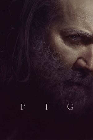 Pig poster 4