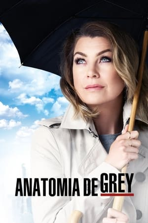 Grey's Anatomy, Season 12 poster 0