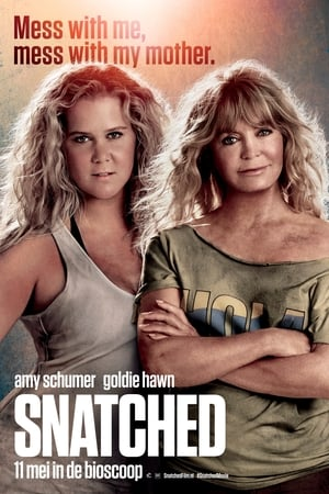 Snatched poster 2