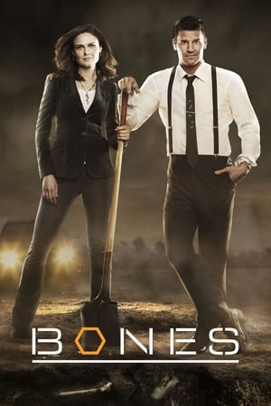 Bones, The Complete Series posters