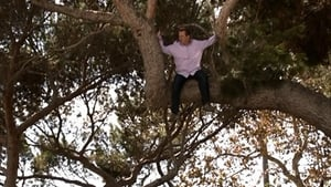 Modern Family, Season 4 - When a Tree Falls image