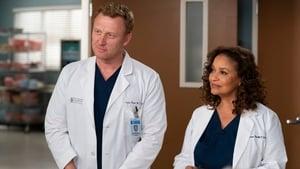 Grey's Anatomy, Season 15 - The Whole Package image