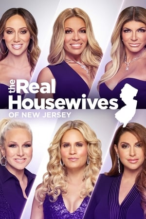 The Real Housewives of New Jersey, Season 11 poster 1