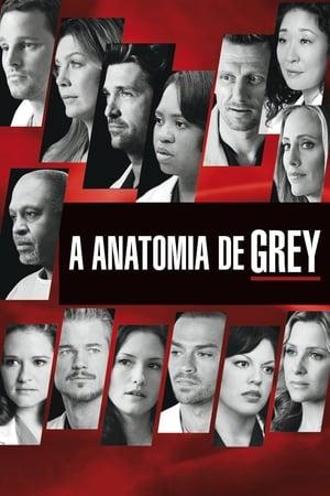 Grey's Anatomy, Season 9 poster 3