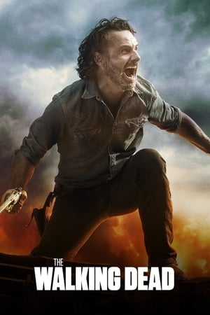 The Walking Dead, Season 9 posters