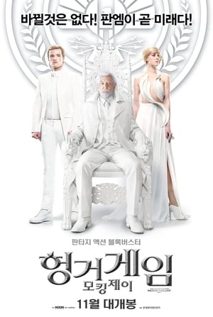 The Hunger Games: Mockingjay - Part 1 poster 4