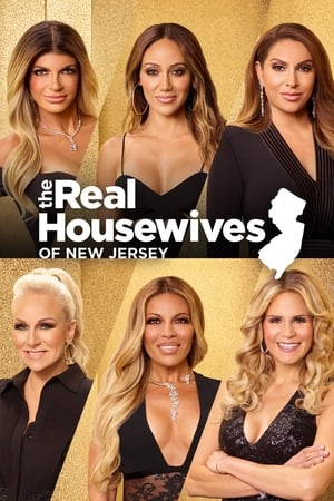 The Real Housewives of New Jersey, Season 11 poster 3